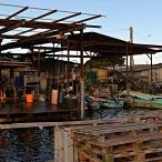 Port ostréicole Le Mourre Blanc