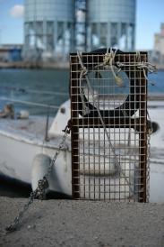 Port la Nouvelle © Daniel Mielniczek