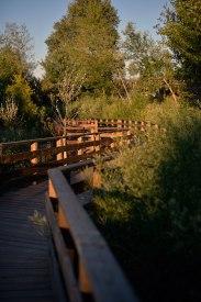 Passerelle d'accès au site de Fonseranes à Béziers